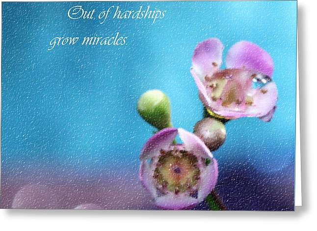 Grow Miracles Greeting Card
