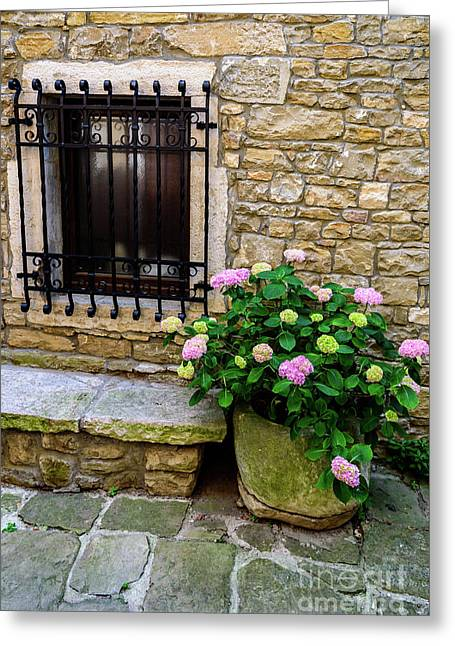 Groznjan Istrian Hill Town Stonework And Flowerpot - Istria, Croatia Greeting Card