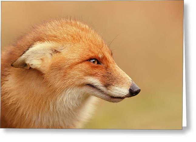 Grumpy Fox Is Grumpy Greeting Card