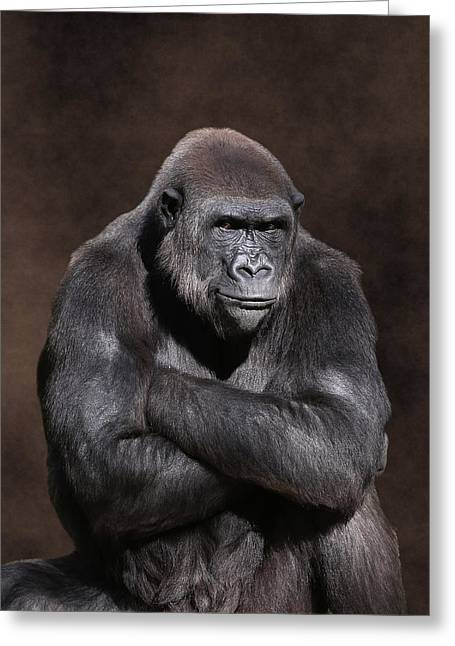 Grumpy Gorilla Greeting Card
