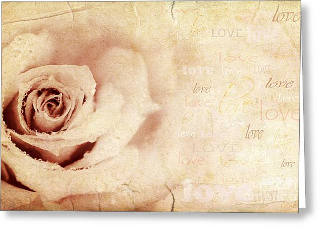 Grungy Rose Background Greeting Card