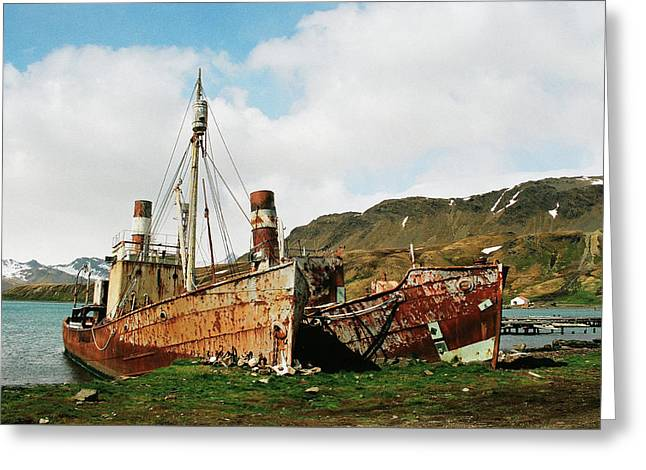 Grytviken Ghosts Greeting Card