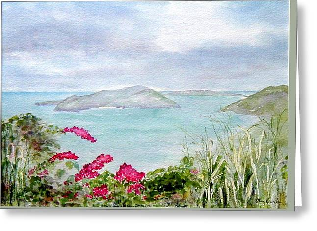 Guana Island Greeting Card