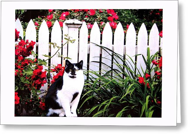 Guarding The Rose Garden Greeting Card by Angela Davies