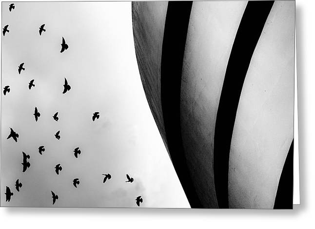 Greeting Card featuring the photograph Guggenheim Museum With Pigeons by Dave Beckerman