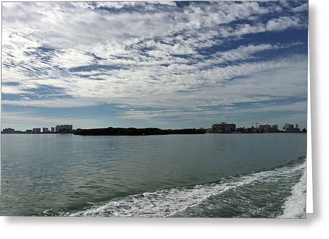 Gulf Coast At Clearwater Florida Greeting Card