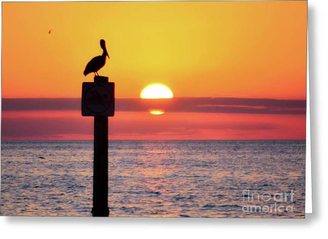 Gulf Coast Enchantment Greeting Card