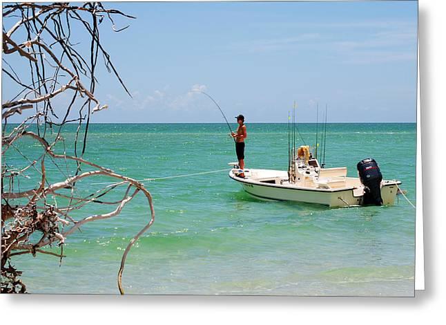 Gulf Fisherman Greeting Card by Steven Scott