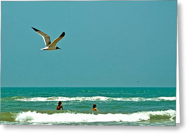 Gulf Of Mexico From Padre Island Greeting Card by Jorge Gaete