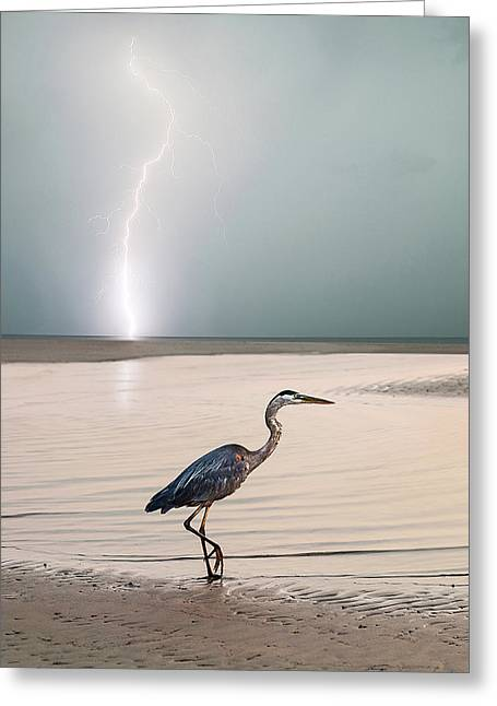 Gulf Port Storm Greeting Card