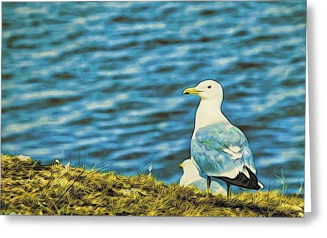 A Baikal Gull Greeting Card by Alexandre Ivanov