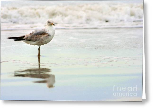 Land Sea And Sky Series 4 Greeting Card by Angela Rath