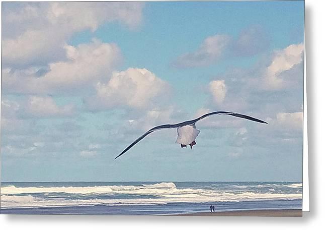 Gull Getaway Greeting Card