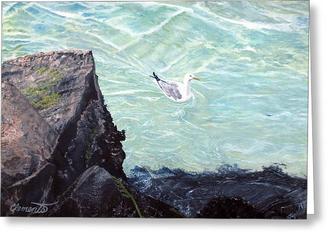 Gull In Shallows Of Barnegat Inlet Greeting Card