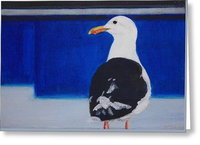 Gull Greeting Card by Sarah Vandenbusch