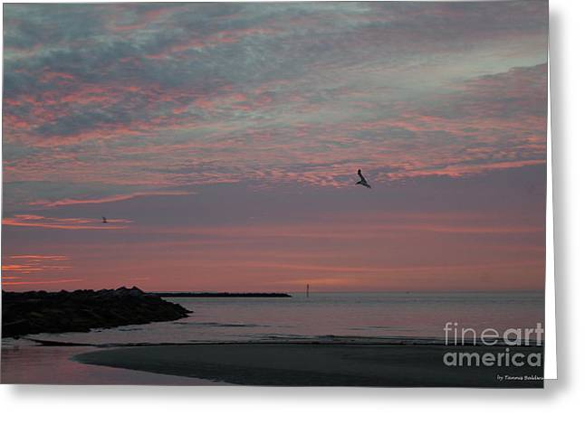 Gull Sunset Greeting Card by Tannis Baldwin