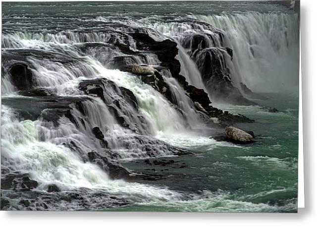 Gullfoss Waterfalls, Iceland Greeting Card