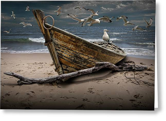 Gulls Flying Over A Shipwrecked Wooden Boat On The Beach Greeting Card