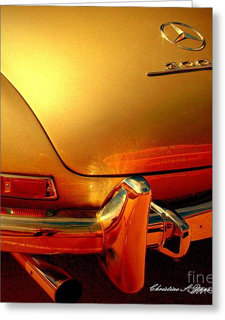 Gullwing II Greeting Card