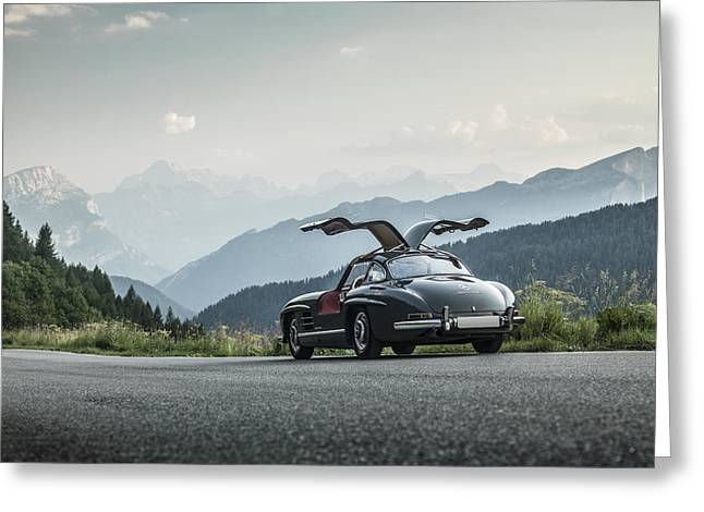 Gullwing In The Mountains Greeting Card