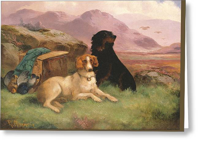 Gun Dogs Greeting Card by Robert Cleminson