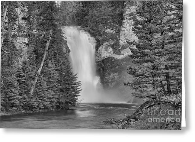 Gushing In The Spring At Trick Falls Black And White Greeting Card