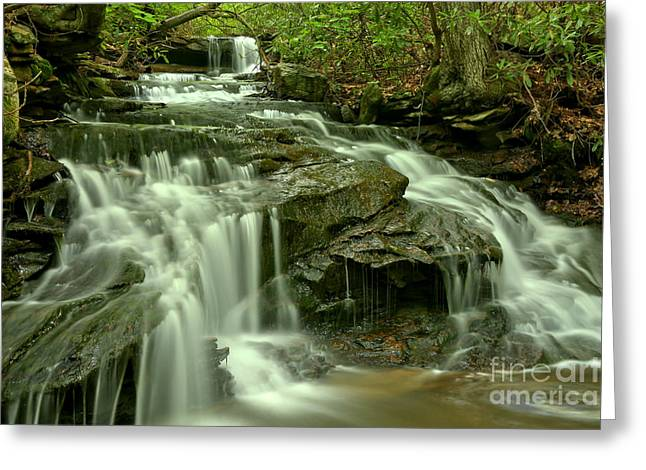 Gushing Through Forbes State Forest Greeting Card