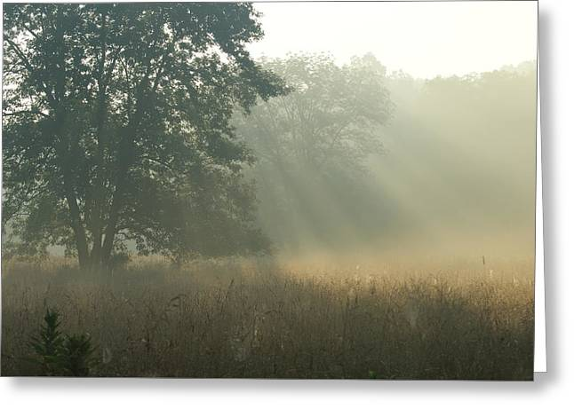 Greeting Card featuring the photograph Guten Morgen by Heidi Poulin