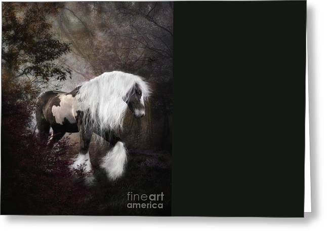 Gypsy Greeting Cards - Gypsy Vanner Greeting Card by Shanina Conway