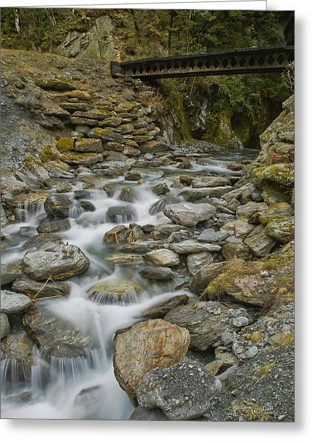 Haast Waterfall Greeting Card by Andrea Cadwallader