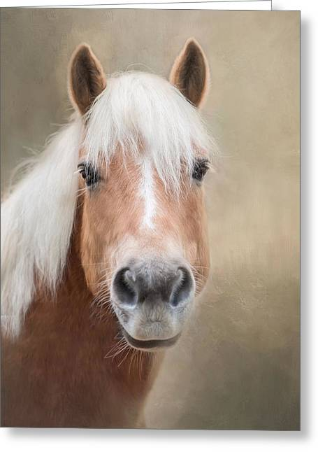 Greeting Card featuring the photograph Haflinger by Robin-Lee Vieira
