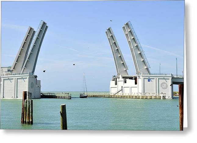 Florida Bridge Greeting Cards - Hail to the little boat Greeting Card by David Lee Thompson