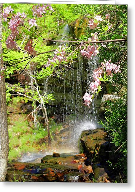 Haily Falls Greeting Card by Marty Koch