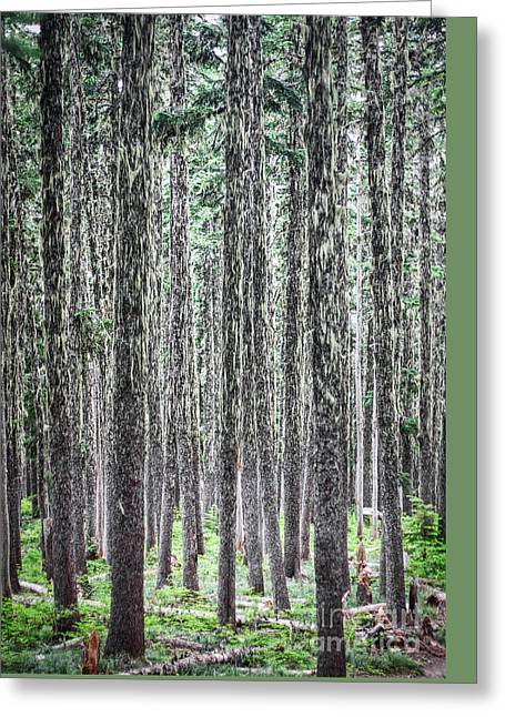 Hairy Forest Greeting Card