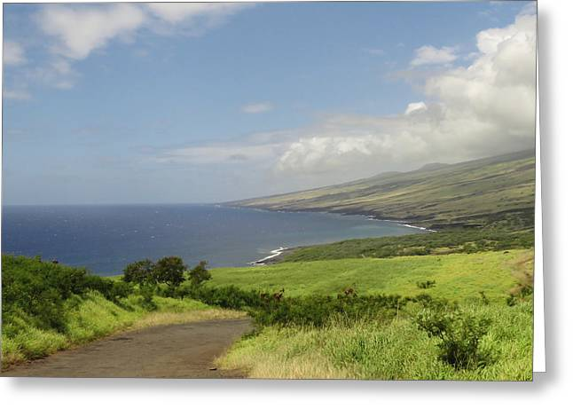 Haleakala's Dry Slope, East Maui Greeting Card by Feva Fotos