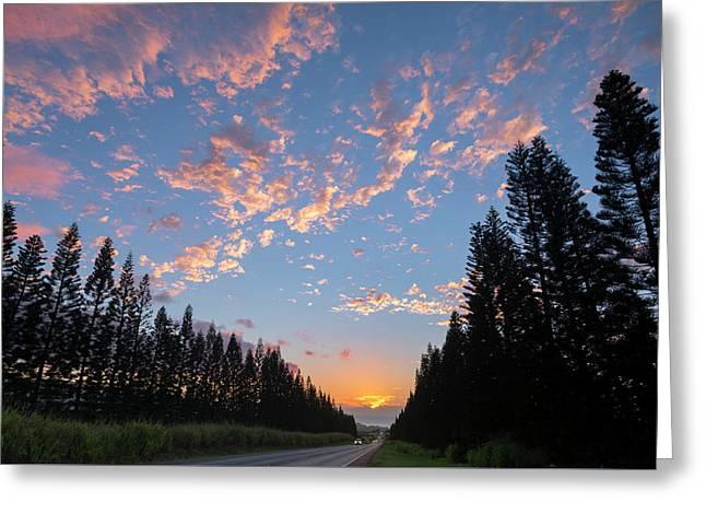 Haleiwa Pines Greeting Card