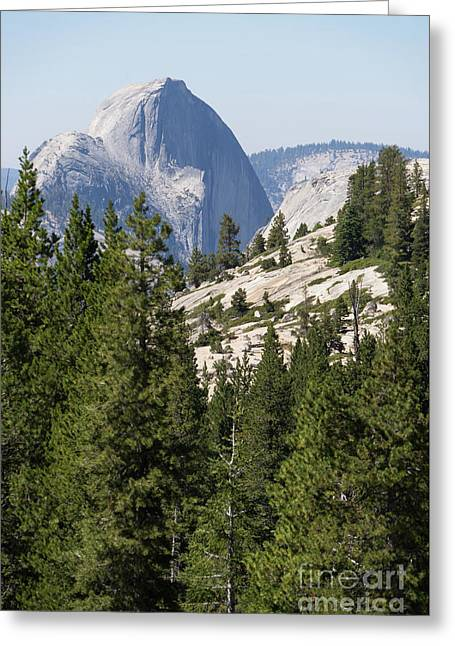 Half Dome And Yosemite Valley From Olmsted Point Tioga Pass Yosemite California Dsc04236 Greeting Card by Wingsdomain Art and Photography