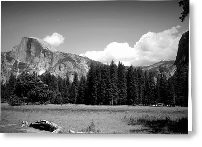 Half Dome Yosemite From The Meadow B And W Greeting Card