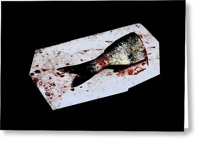 Half Fish Greeting Card by Tianxin Zheng