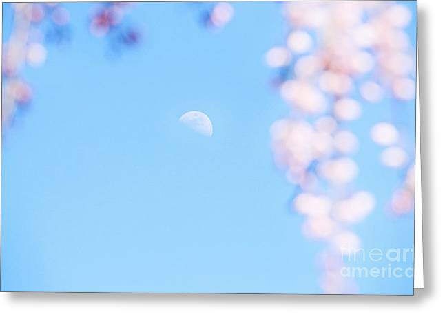 Half Moon And Weeping Cherry Blossoms Greeting Card by Charline Xia