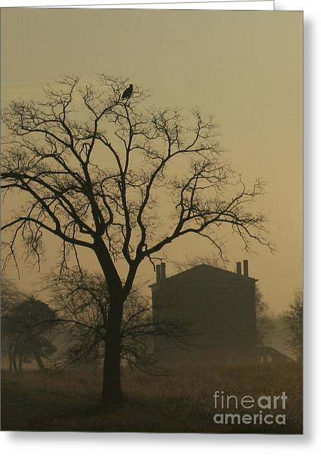 Halfway House And Eagle Greeting Card