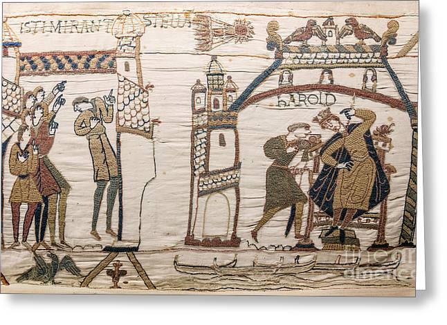 Halleys Comet Of 1066, Bayeux Tapestry Greeting Card