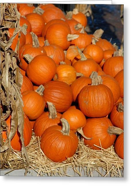Halloween 69 Greeting Card by Joyce StJames