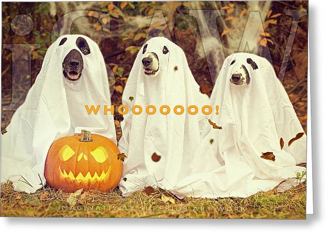 Halloween Hounds Greeting Card