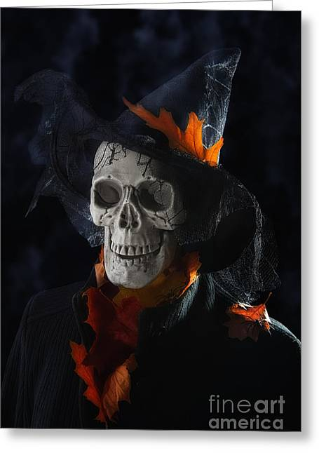 Halloween Skull Greeting Card by Amanda Elwell