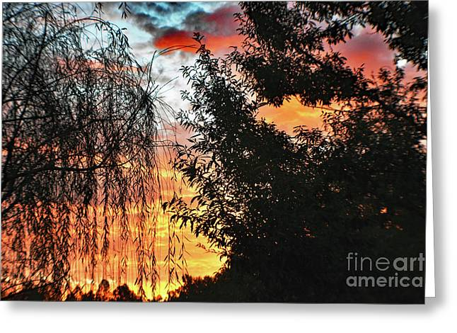 Halloween Sunrise 2015 Greeting Card