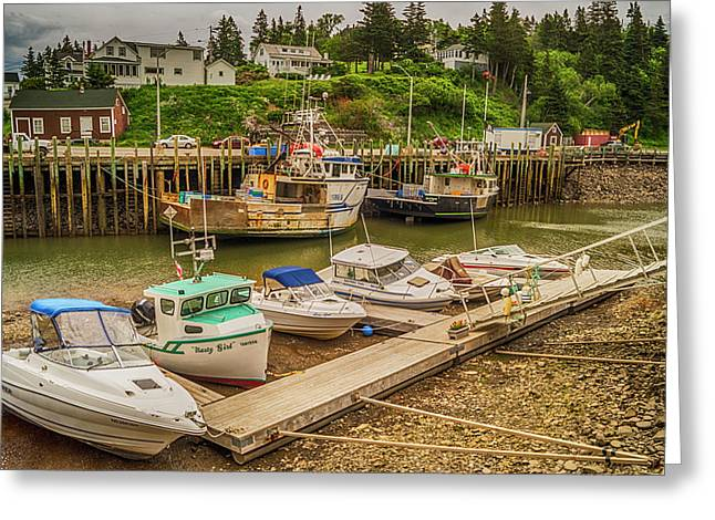 Hall's Harbour At Low Fundy Greeting Card
