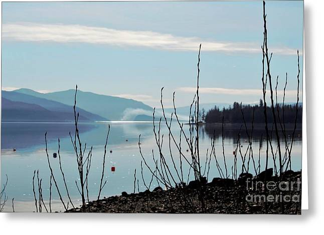 Halo On Copper Island Greeting Card