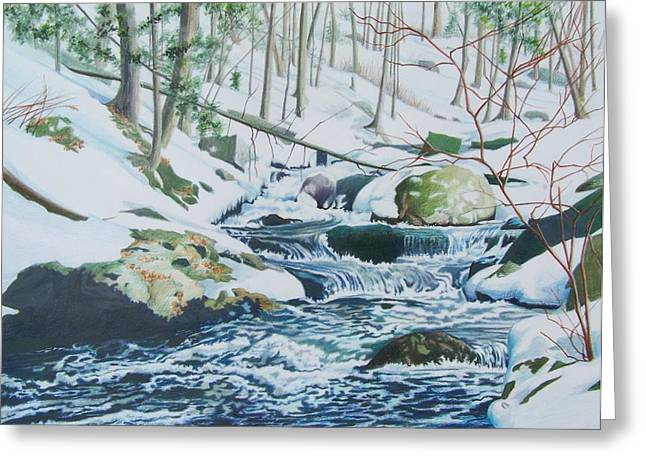 Greeting Card featuring the mixed media Hamburg Mountain Stream by Constance Drescher