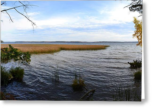 Greeting Card featuring the photograph Hamlin Lake In Autumn by Michelle Calkins